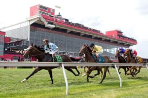 Preakness 2015 photo